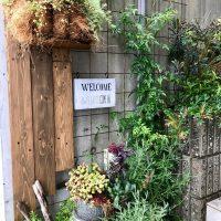 黒谷の庭 グリーンプラスガーデン タマンサリ施工事例
