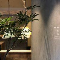 TETO |グリーン+ガーデン タマンサリ施工例